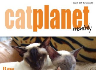 Front Cover Cat Planet Magazine Issue 10