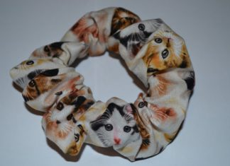 Owners Urged Not to Use Scrunchies on Cats
