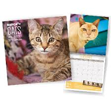 UK Cat News | RSPCA Sign Pet Calendar Deal