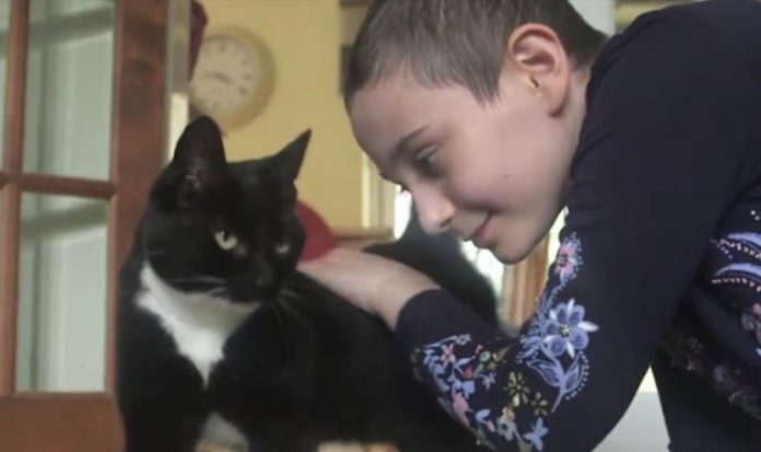 Genie The Cat With Owner
