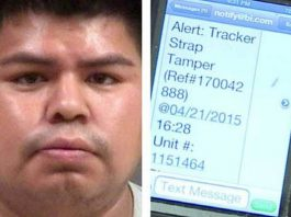 Suspected Drug Dealer Fixes GPS Tag to His Cat